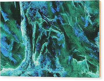 Contours 081 Abstract Wood Print by Natalie Kinnear