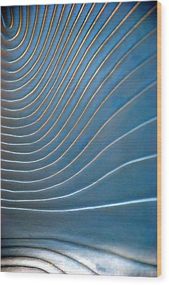 Contours 1 Wood Print by Wendy Wilton