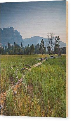 Cook's Meadow Wood Print