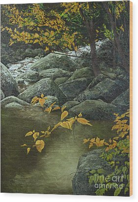 Cool And Shady Wood Print