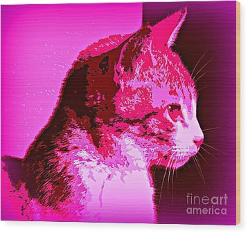 Cool Cat Wood Print by Clare Bevan