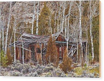 Cool Colorado Rural Rustic Rundown Rocky Mountain Cabin  Wood Print by James BO  Insogna