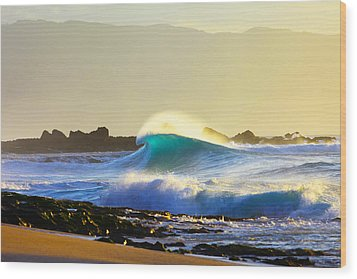 Cool Curl Wood Print by Sean Davey