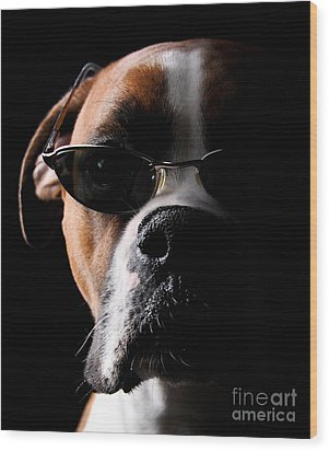Cool Dog Wood Print by Jt PhotoDesign