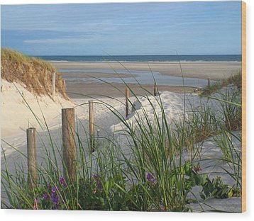 Wood Print featuring the photograph Cool Of Morning by Dianne Cowen