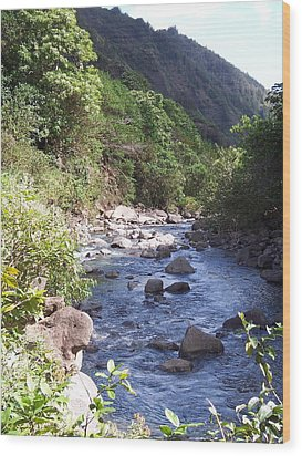 Wood Print featuring the photograph Cool Stream by Sheila Byers