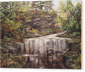 Cool Waterfall Wood Print by Dorothy Maier