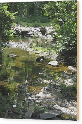 Wood Print featuring the photograph Cool Waters by Ellen Levinson