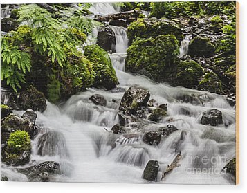Cool Waters Wood Print by Suzanne Luft