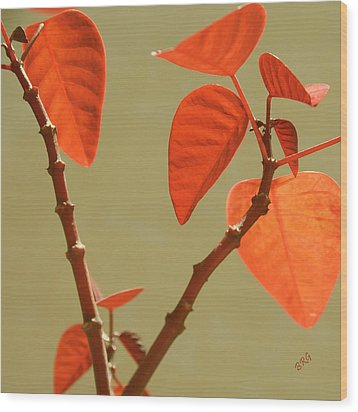 Copper Plant Wood Print by Ben and Raisa Gertsberg