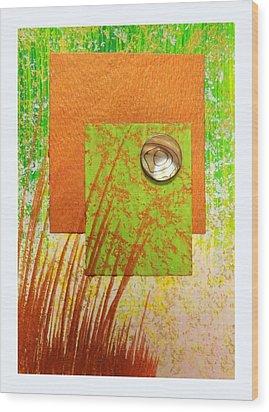 Copper Sunset Wood Print by Darren Robinson