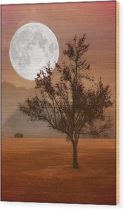 Copper Tree Wood Print by Tom York Images