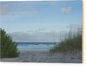 Wood Print featuring the photograph Coquina Beach by Gregg Southard