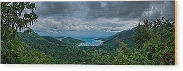 Coral Bay Wood Print by Jason Lanier