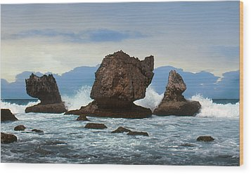 Wood Print featuring the photograph Coral Bones by Ben Kotyuk