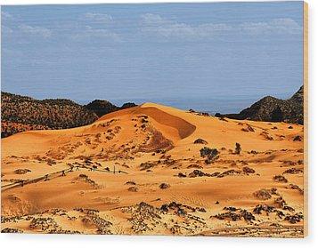 Coral Pink Sand Dunes Utah Wood Print by Christine Till