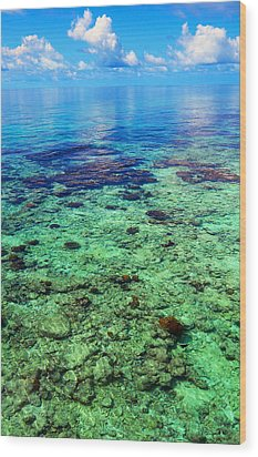 Coral Reef Near The Island At Peaceful Day. Maldives Wood Print by Jenny Rainbow