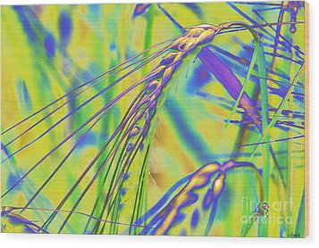 Corn Wood Print by Carol Lynch