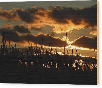 Corn En Fuego Wood Print by Wild Thing