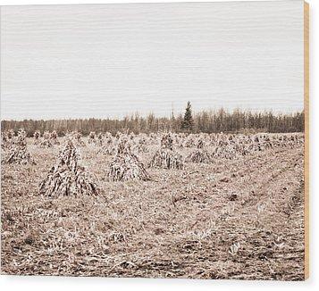 Corn Shocks Wood Print by Maggy Marsh