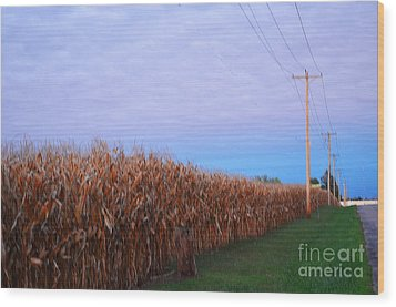 Cornfield In Autumn Wood Print by Luther Fine Art