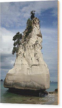 Coromandel Rock Wood Print by Barbie Corbett-Newmin