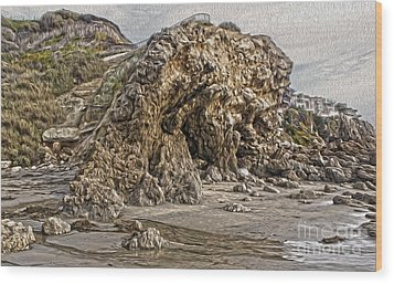 Corona Del Mar Sea Cave Wood Print by Gregory Dyer