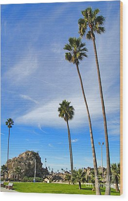 Corona Del Mar State Beach - 01 Wood Print by Gregory Dyer