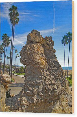 Corona Del Mar State Beach - 02 Wood Print by Gregory Dyer