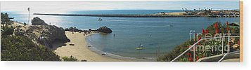 Corona Del Mar State Beach Wood Print by Gregory Dyer