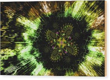 Cosmic Solar Flower Fern Flare Wood Print by Shawn Dall