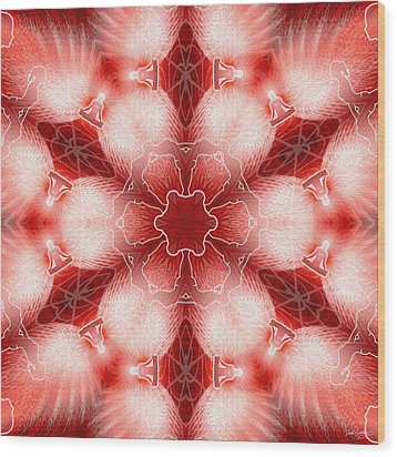Cosmic Spiral Kaleidoscope 22 Wood Print by Derek Gedney