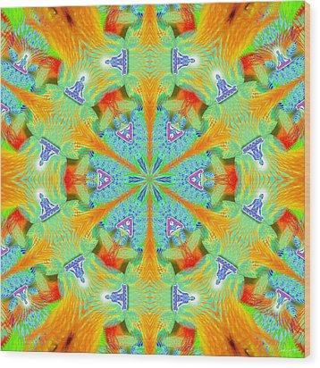 Cosmic Spiral Kaleidoscope 41 Wood Print by Derek Gedney