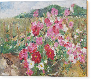 Cosmos In The Field Wood Print by Becky Kim
