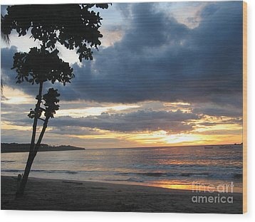 Wood Print featuring the photograph Costa Rica Palm Sunset - Seascape by Shelia Kempf
