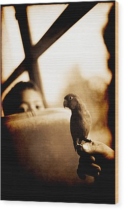 Costa Rican Bird Boy Wood Print