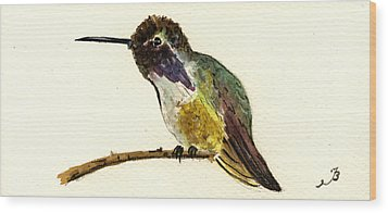 Costa S Hummingbird Wood Print by Juan  Bosco