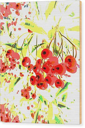 Wood Print featuring the photograph Cotoneaster by Barbara Moignard