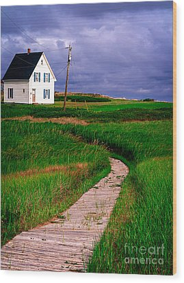 Cottage Among The Dunes Wood Print by Edward Fielding
