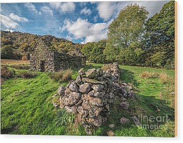 Cottage Ruin Wood Print by Adrian Evans