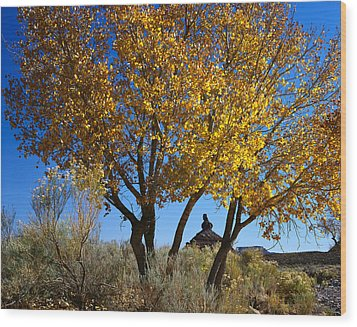 Cottonwood And Nipple Butte Wood Print
