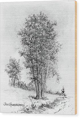 Cottonwood Wood Print