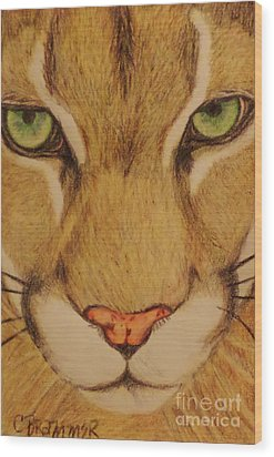 Cougar Wood Print by Christy Saunders Church
