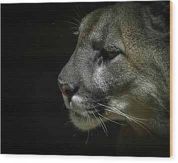 Cougar Wood Print by Ernie Echols