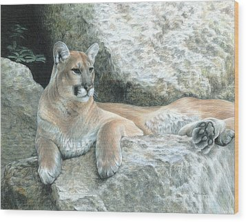 Cougar Haven Wood Print