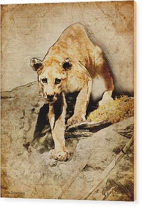 Cougar Hunting Wood Print by Ray Downing
