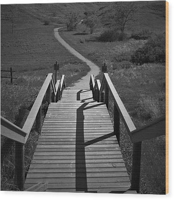 Coulee Stairs Wood Print by Donald S Hall