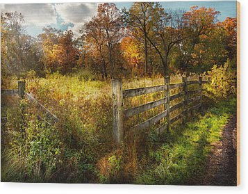 Country - Autumn Years  Wood Print by Mike Savad