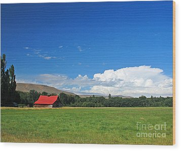 Country Barn Wood Print by Chuck Flewelling