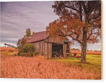 Country Barn Wood Print by Mary Timman